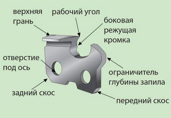 Устройство зубьев